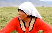 Невеста поневоле. Новый киргизский фильм-комедия получи и распишись русском языке